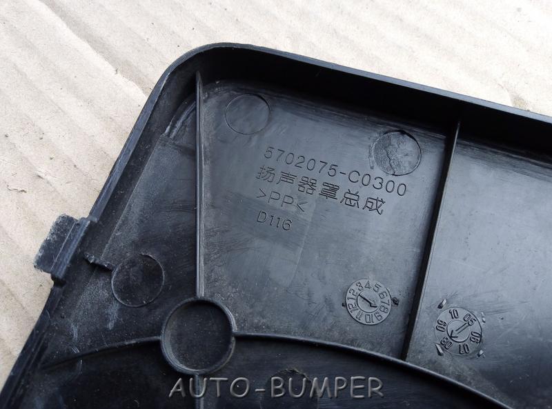DongFeng Накладка динамика   5702075-C0300,  5702075C0300
