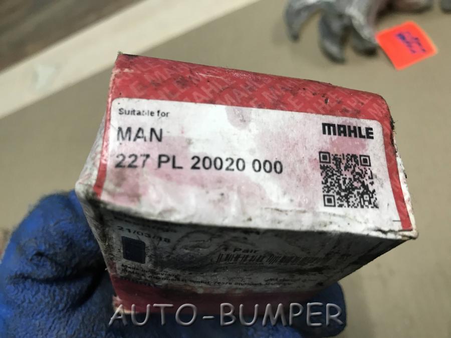 Вкладыши шатунные  227PL20020000