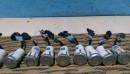 Уаз Патриот  2012- Датчик парковки (серебро) 3163-3839080-30, 3163383908030